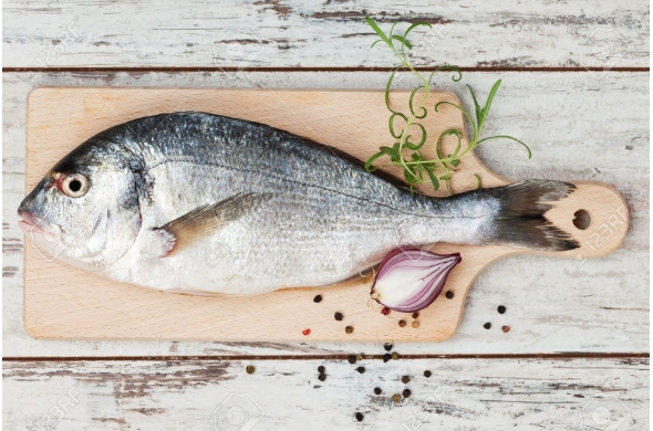 Glace écaille pour poissonnerie