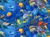L'univers de la poissonnerie - Sanmac